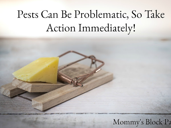 Pests Can Be Problematic, So Take Action Immediately!
