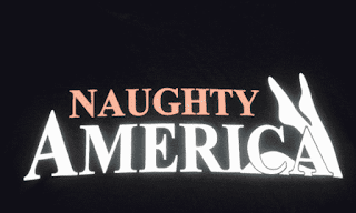 Free NaughtyAmerica Porn Passwords Premium Logins