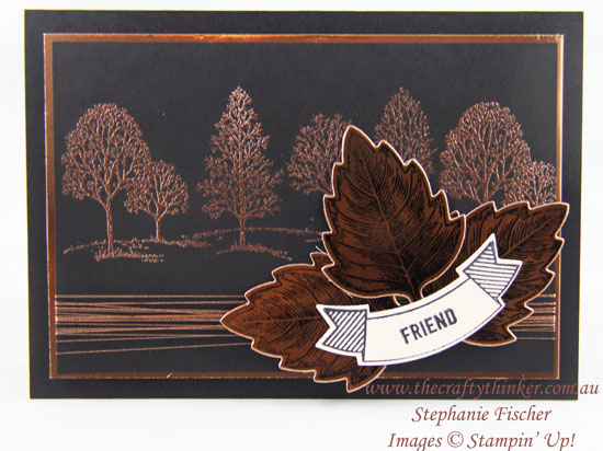 Stampin Up, #thecraftythinker, Lovely As A Tree, Vintage Leaves, Masculine, Copper, Stampin Up Australia Demonstrator, Stephanie Fischer, Sydney NSW