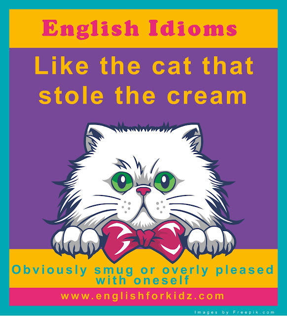 English idiom picture - like a cat that stole the cream