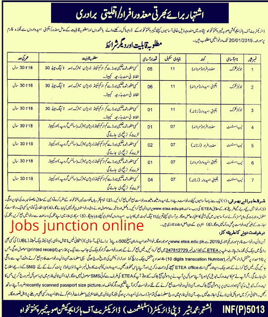 Higher Education Department KPK ETEA Latest Jobs 2019