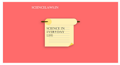science in everyday life essay