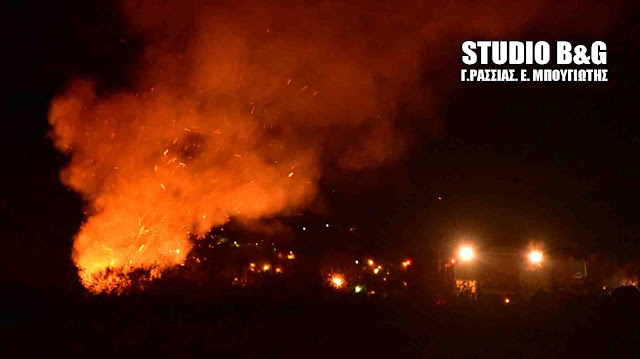 Αργολίδα: Πυρκαγιά στο βάλτο Νέας Κίου τα ξημερώματα