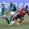 www.seuguara.com.br/Palmeiras/Flamengo/Brasileirão 2020/