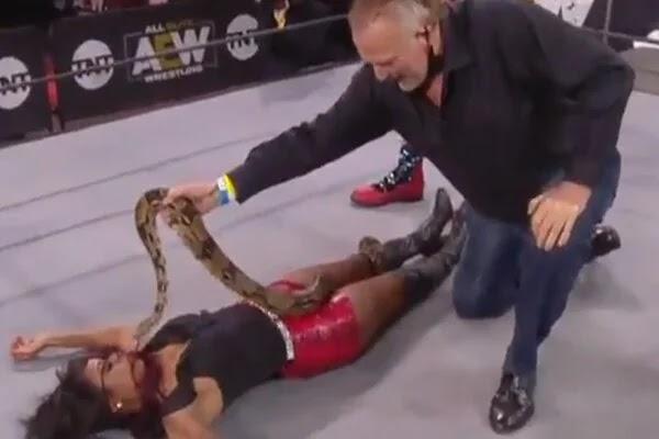 شاهد جيك ذا سنيك روبرتس يضع ثعبانا عملاقا فوق المصارعة براندي رودز في عرض AEW ديناميت (فيديو)