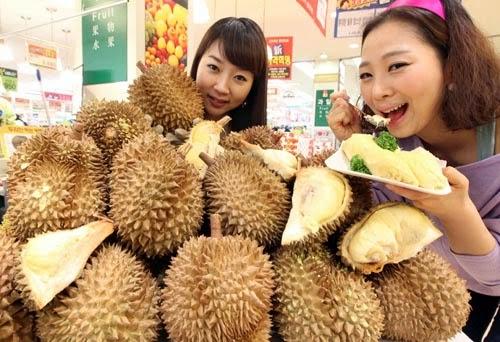 ternyata sangat penting untuk kesehatan badan insan Manfaat Luar Biasa Buah Durian untuk Tubuh