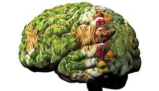 Kaum Pria, ingin dapatkan daya ingat yang baik ? Baca ini !, RTH, Rumah Terapi Herbal