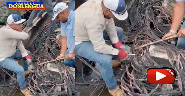 Con un cuchillo de cocina y un palo trabajadores de CORPOELEC reparan averías