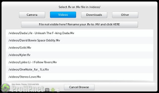 MovieFlvPlayer flv support for BlackBerry PlayBook - Preview 1