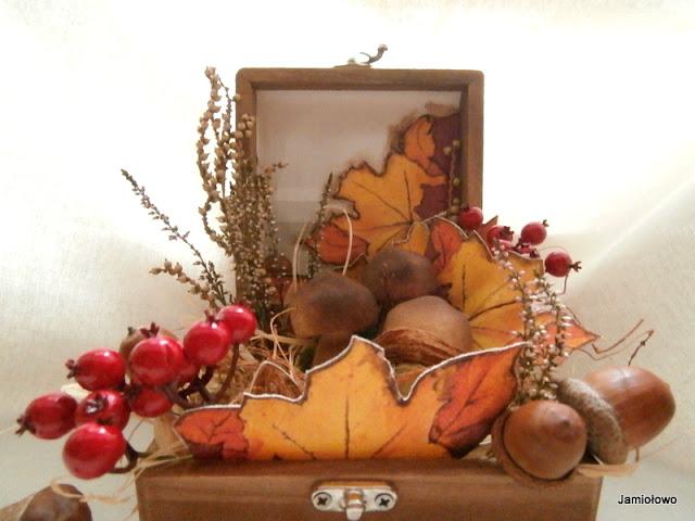 z darów jesieni ułożyłam dekoracyjną kompozycję