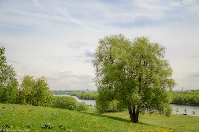 Москва-река в Коломенском фото
