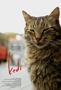 Kedi 2016 reviews