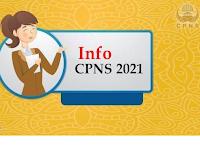 Siapkan dari Sekarang! Ini Dokumen dan Syarat Lengkap saat Daftar CPNS 2021