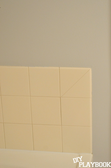 Sherwin Williams Passive is perfect for the bathroom