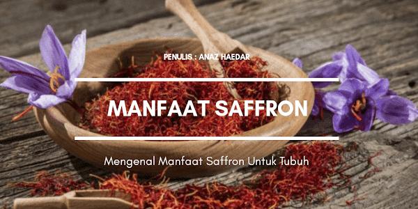 Mengenal Manfaat Saffron Untuk Tubuh