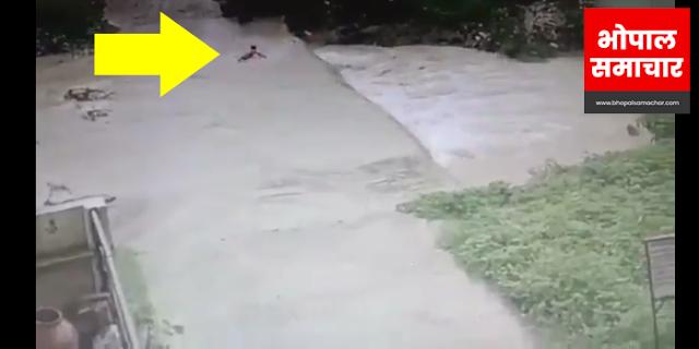 हंसता खिलखिलाता 10 वर्षीय बालक बरसाती बाढ़ में बह गया (VIDEO)