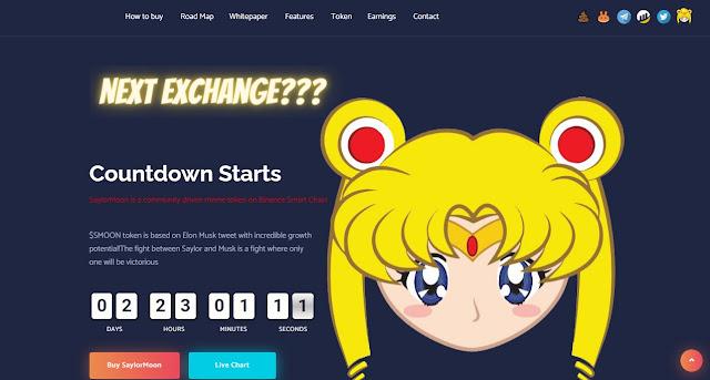Screenshot Halaman Website Cryptocurrency Saylor Moon (SMOON)