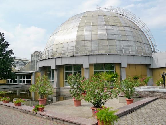 Донецьк. Ботанічний сад. Оранжерея