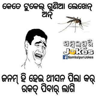 sambalpuri non veg jokes image