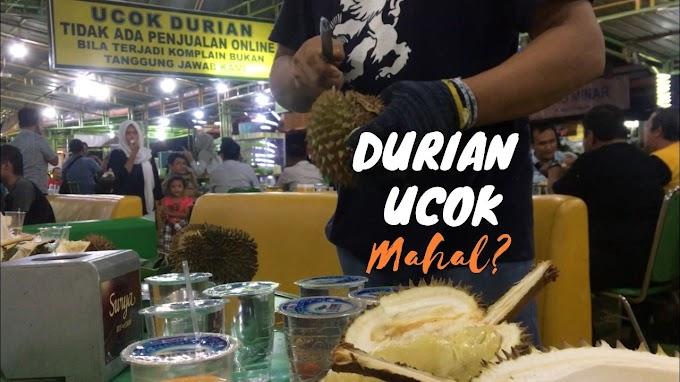 Durian Ucok Mahal? Berapa Sih Harganya