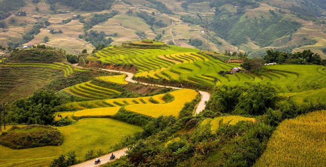 Vietnam beauty won over foreign visitors 6