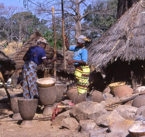 Making Sweet Corn Maize Porridge Cereal with a mortar and pestle photo by gbaku