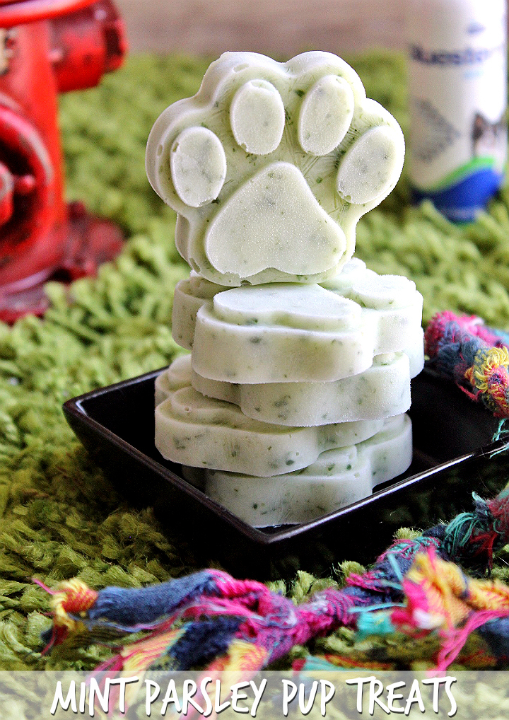 Mint Parsley Pup Treats | Homemade Dog Treats For Man's Best Friend | Healthy Dog Treat Recipes