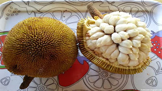marang fruit images wallpaper