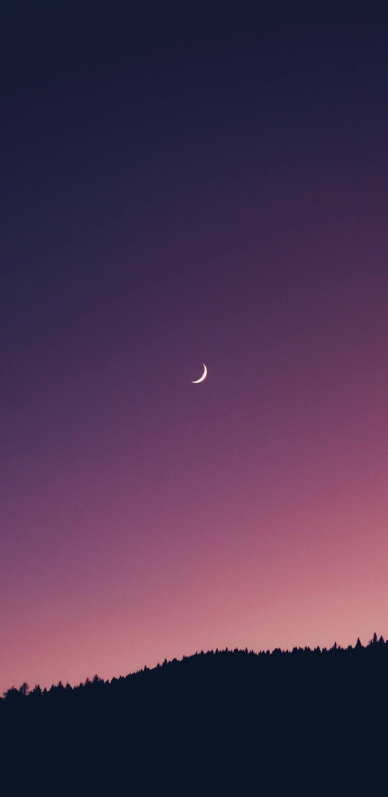 Crescent moon in the twilight sky