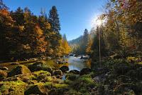 Autumn River - Photo by Ricardo Gomez Angel on Unspl