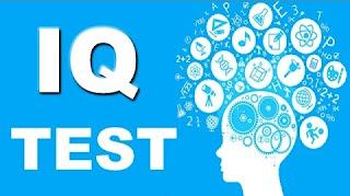 Tes Psikologi / Tes IQ atau Skill Test dalam Seleksi Tenaga Kerja