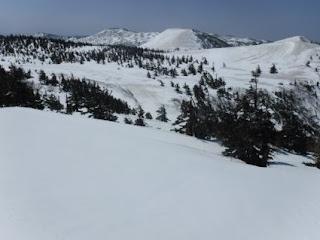 大岳山麓の丘