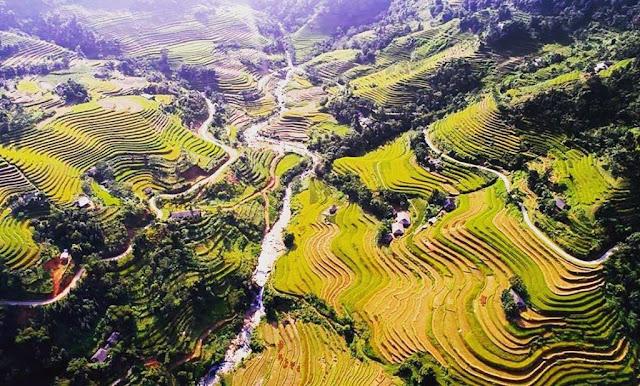 Dong Van (Ha Giang)