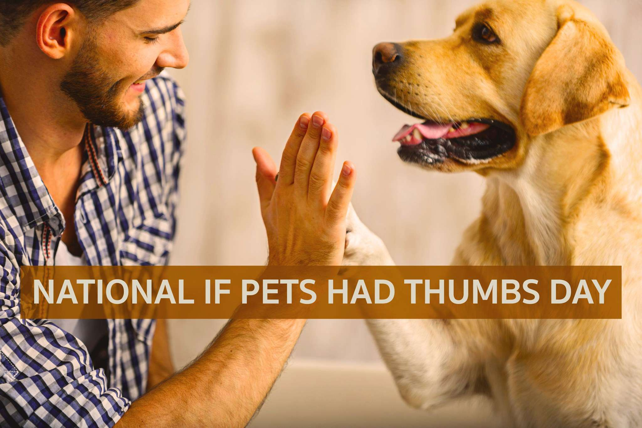 National If Pets Had Thumbs Day Wishes Beautiful Image