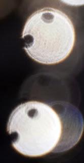 paranormal photograph