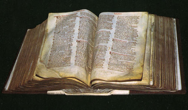 New insights from original Domesday survey revealed