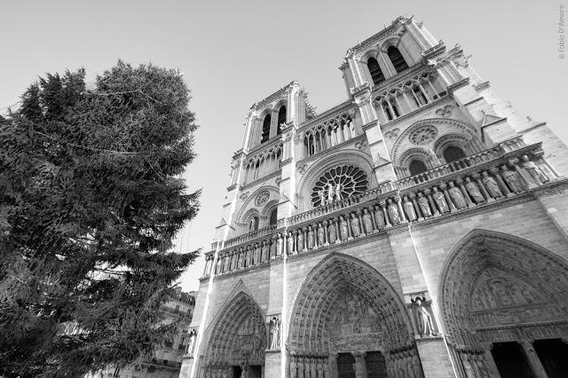 Notre-Dame de Paris-Parigi