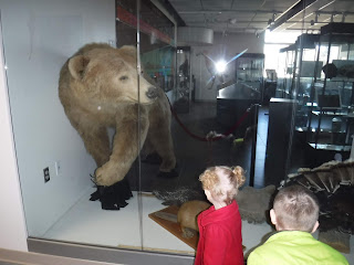 a very small girl with pigtails and a red coat and a slightly larger boy in a lime green coat admire a real stuffed bear through a window at Wayne State College in Nebraska