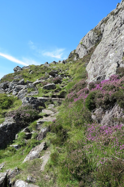 A rocky path leading uphill, with grass and heather beside it.