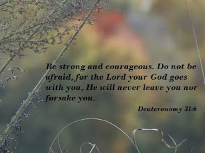 Be strong and courageous. Do not be afraid or terrified because of them, for the LORD your God goes with you; he will never leave you nor forsake. -Deuteronomy 31:6