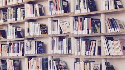 Libros con muchas vidas