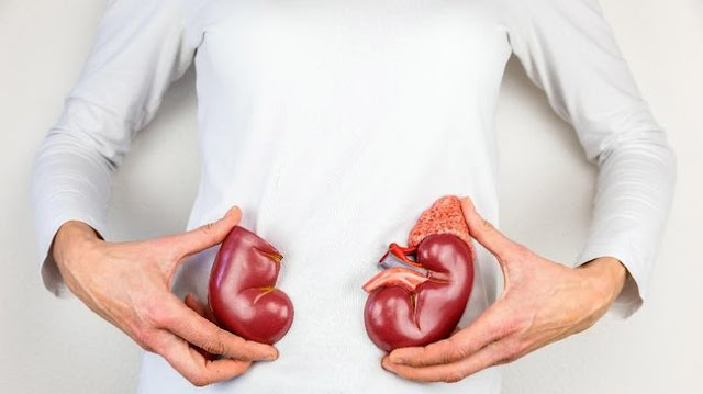 Cara Menjaga Ginjal dan Tekanan Darah Normal