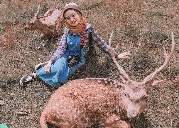 12 penagkaran rusa kertamanah pict from @tami.amira