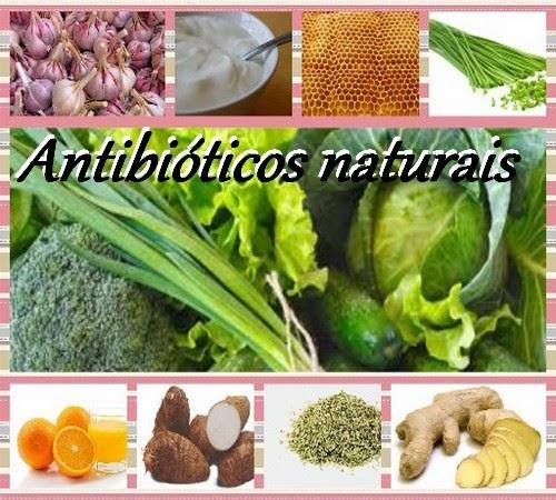 9 antibióticos naturais
