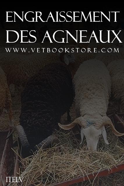 Engraissement Des Agneaux - WWW.VETBOOKSTORE.COM