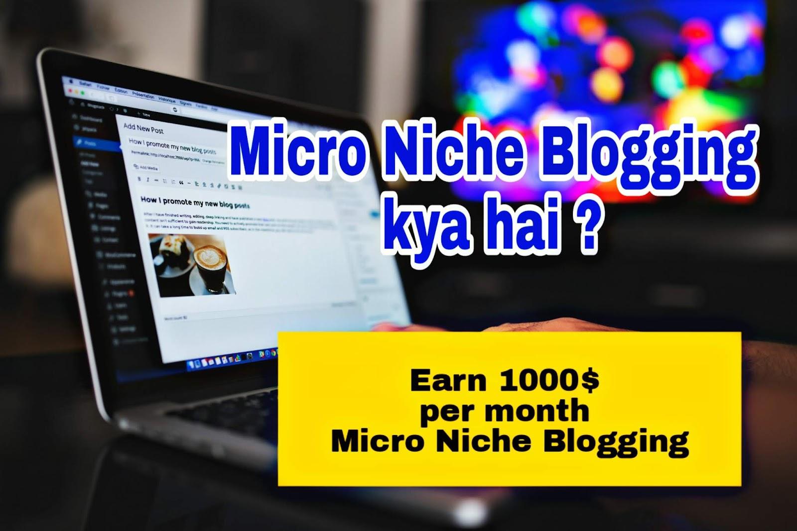 Earn 1000$ Per Month | Micro Niche Blogging