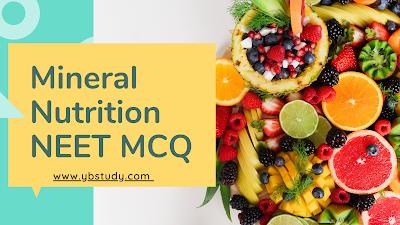 Mineral Nutrition NEET Questions MCQ Pdf