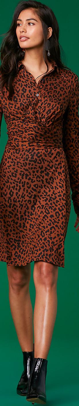Diane Von Furstenberg The DVF Didi Dress