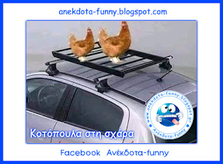 Κοτόπουλα στη σχάρα