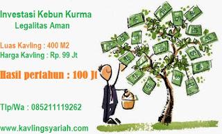 investasi syariah kebun kurma